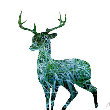Deer Print, Rustic Spring Decor, Grass Pattern, Animal Photography, Teal Blue Wall Art, Green, Teal Abstract Art