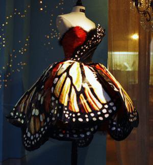 The Owl Diary: Dress like a butterfly on we heart it / visual bookmark #10742539
