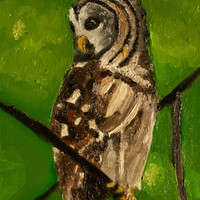 Summer Tree Owl Painting - Original.. on Luulla