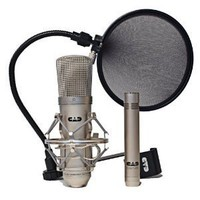 Amazon.com: CAD GXL2200SP Studio Condenser Mic Recording Pack: Musical Instruments