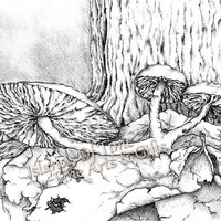 Black White Mushrooms Fine Art Print Drawing Mutants Of The Deep Wood