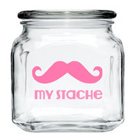 My Stache Jar - Mustache Glass Jar - Bubblegum Pink - 32 oz. Money Jar