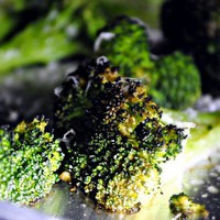 *Simply Scratch*: Roasted Broccoli with Lemon, Chili-Garlic Oil & Parmesan