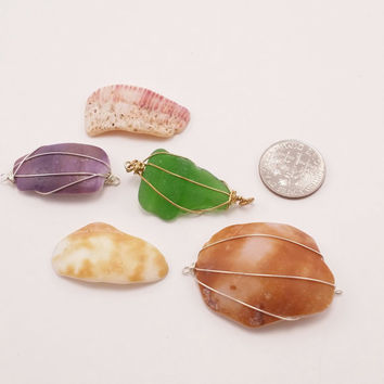 destash beads - hawaii shell - connector - shell fragments - ds6