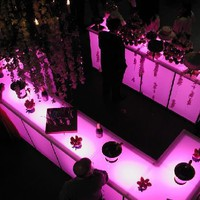 Amazing Beauty Party Room Design Decorating With Lighting Ideas on All House Design | All House Design