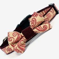 Bow Tie Dog Collar, Paisley, Burgundy, Maroon, Cream, Denim no.140B