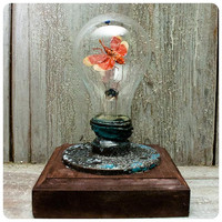 Upcycled light bulb with Insect by DecouDermy on Etsy