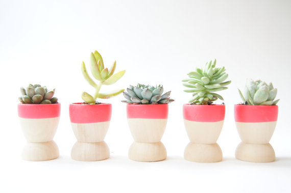Mini Planters set of 5, Neon Pink, modern home decor, wedding favors