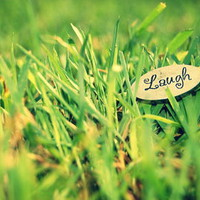 Laughing in the Grass Art Print by Emma K ♥ | Society6