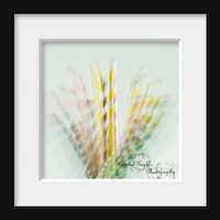 Paper Straws In Motion 12x12 Kitchen Wall Decor Art Photography Print