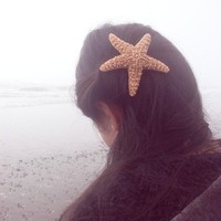 Natural Sugar Starfish Barrette - Large - Cute Adorable Beach Boho Elegant Romantic Whimsical Whimsy - Dreamy Sea Star - Mermaid Collection