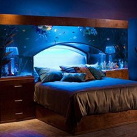 Well Designed Aquarium Bed | IcreativeD
