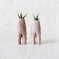 Tweedle Dee & Tweedle Dum Twins - Antique German Bisque Doll Air Plant Garden