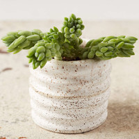 Casual Seance Handmade Ceramic Planter - Urban Outfitters