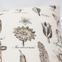 Decorative Pillow 12x16 Study of Botany Cream Brown Botanical Home Decor Natural History