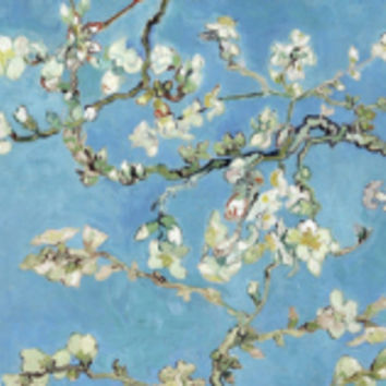 Almond Branches in Bloom, San Remy, c.1890 Art Print by Vincent van Gogh at Art.com