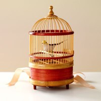 Kids' Gifts: Kids Singing Bird in Cage