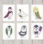 Nursery Art - Color Birds - Art Print - 5x7