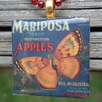 Mariposa Apples with Butterfly In Dark Blue and Orange