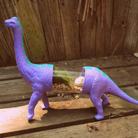 SPECIAL EDITION Dino Terrarium Long Neck in Purple and Teal with Skull
