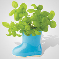 Mini Rainboot Gardens