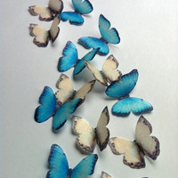 The Original EDIBLE BUTTERFLIES Small Blue and by SugarRobot