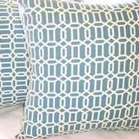 Blue Trellis Indoor/outdoor pillow cover 16 x 16