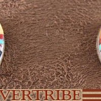 Native American Jewelry | Multicolor Earrings | Turquoise Jewelry | Post Earring