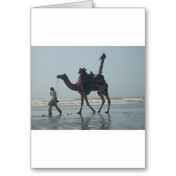 Coastal tribal Camel.JPG