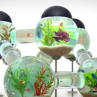 Labyrinth Aquarium | Uncrate