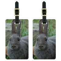 Bunny Rabbit Gray - Easter Luggage Tag Set