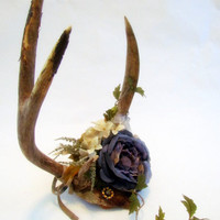 The Lady of the Manor vintage taxidermy antlers by clcort