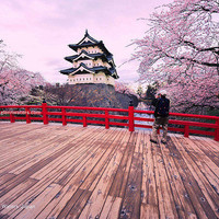 amazing, awesome, beautiful, castle, cherry, cherry blossom - inspiring picture on Favim.com