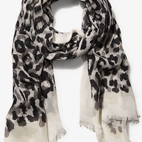 GRAY OVERLAPPING LEOPARD PRINT QUAD SCARF from EXPRESS