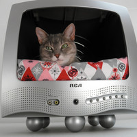 Recycled T.V. Pet Bed - Mid Century Decor - Whimsical Decor - Cat TV - Dog TV - Upcycled Green
