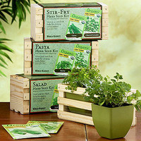 Culinary Herb Planter Seed Kits | Outdoor and Patio Decor| Home Decor | World Market