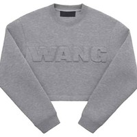Alexander Wang H&M Crop Top Long Sleeve ( Gray)