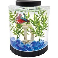 Tetra LED Half Moon Betta Kit for Fish | 1/2 to 5 Gallon