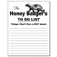 Honey Badger Funny Notepad Office Memo Pad Gag Gift