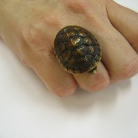 Huge Sleeping Turtle Finger Ring by mrd74 on Etsy