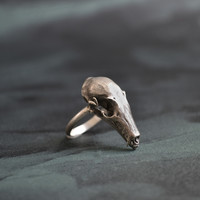 Hydra Maximus Dragon Skull Ring