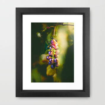 Pinot Framed Art Print by HappyMelvin
