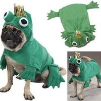 Amazon.com: PRINCE OF FROGS - Pet Halloween Costume MEDIUM - PRINCE OF FROGS - Pet Hallow...: Patio, Lawn & Garden