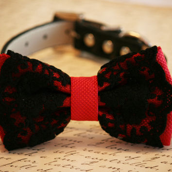 Red dog Dog Bow Tie,Red bow with Black Lace, Pet accessory,Dog Birthday Gift, Sexy, Red Lovers