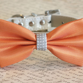 Orange and Gray Dog Bow Tie, Pet Wedding accessory, Orange wedding idea, Dog Birthday Gift, Summer Wedding