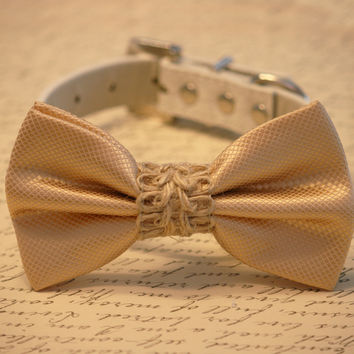 Cream Wedding dog Collar, Cream Dog Bow tie, Country wedding, Dog Lovers, Bow attached to leather collar
