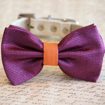 Sangria and Orange Wedding Dog Collar, Sangria Pet wedding accessory, Sangria Dog Bow tie, Sangria Wedding