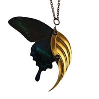 Dark Butterfly Blade Wing - Deadly Gorgeous Neo Victorian Fairy Jewelry - 24K Gold Plated - With Real Butterfly Wings - Free Shipping