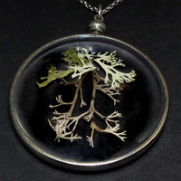 Specimen Necklace 0015 Mixed Lichen