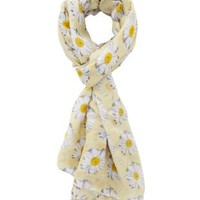 Daisy Print Wrap Scarf by Charlotte Russe - Yellow Combo